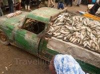 Puerto pesquero en Nuakchot