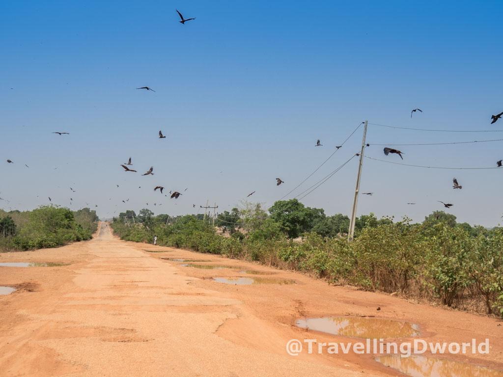 Águilas en el camino al norte, Nigeria