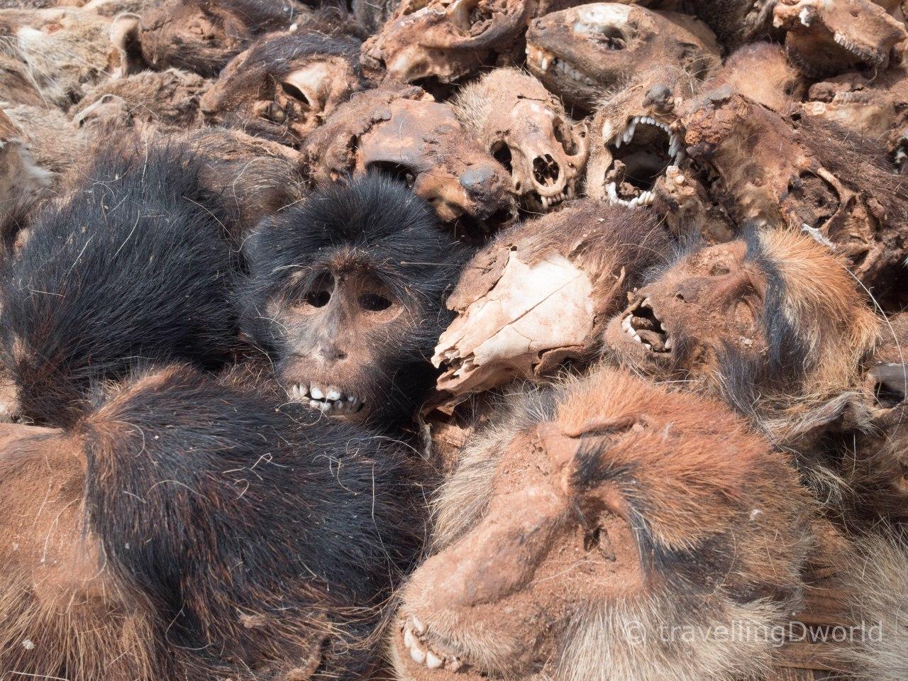 Mercado de fetiches en Bohicon, Benín