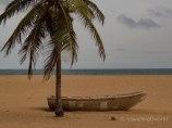Barca y Cocotero en la playa de Grand Popo, Benín