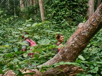 En la selva espesa de La Lopé, Gabón.